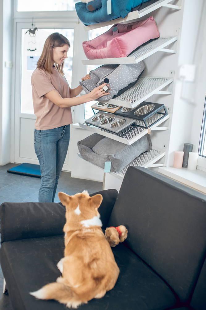 Łóżeczka legowiska i poduszki dla psów