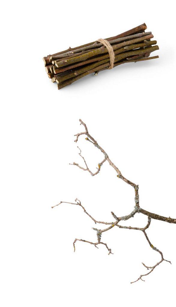 Gałęzie które przeszły proces rozdrabniania w maszynie